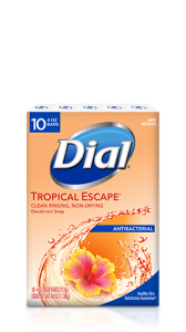 Dial All day freshness tropical Escape Antibacterial deodorant body soap