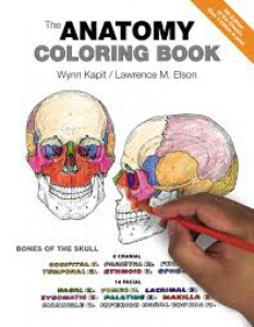Coloring Guide to Regional Human Anatomy Coloring Book